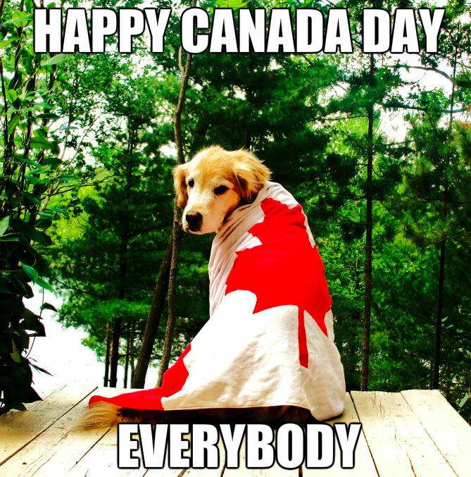 Canada Day 2019 Memes