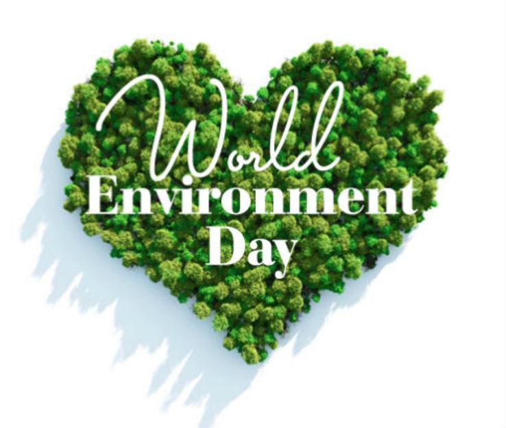 World Environment Day Whatsapp DP