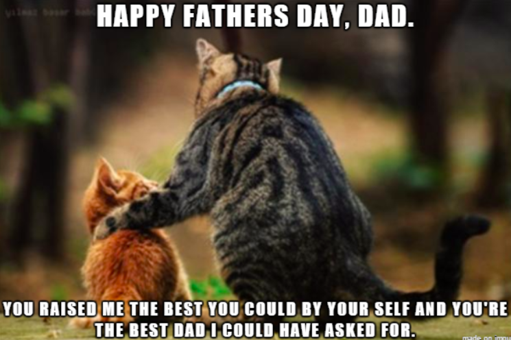 fathers day funny memes