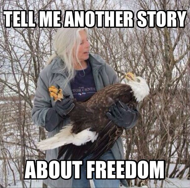 Tell Me Another Story About Freedom - Funny Fourth of July Memes