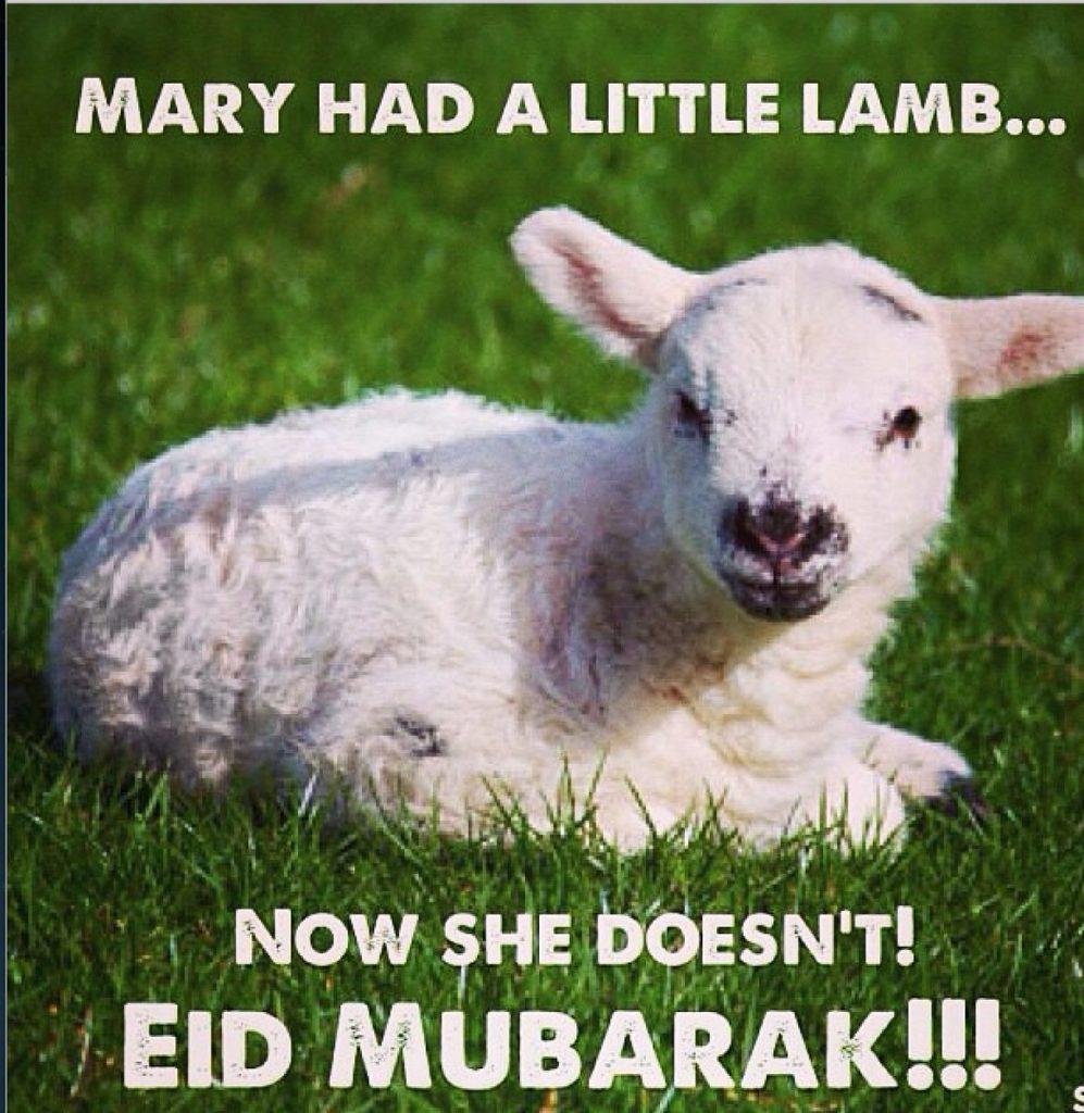 Bakra Eid Memes
