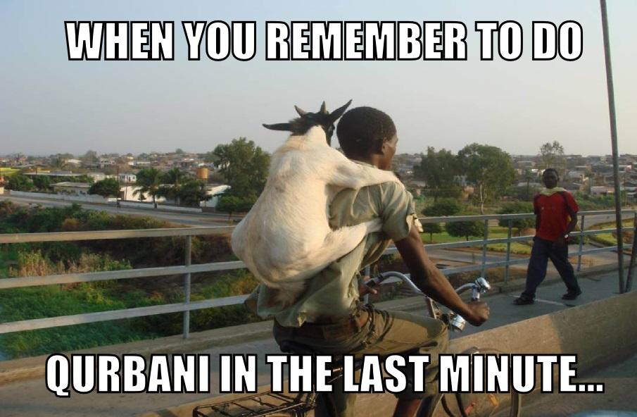 Bakri Eid memes