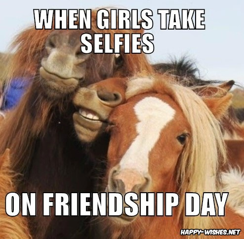 Friendship Day Funny Meme for Instagram