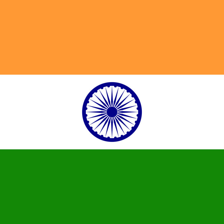 Indian Flag DP
