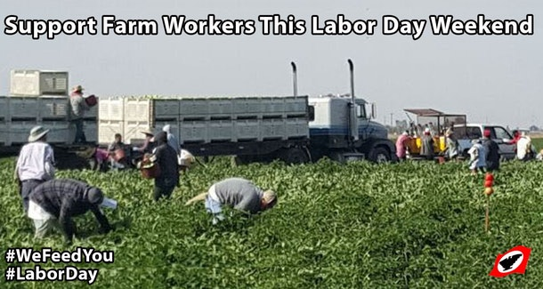Labor Day Is Basically Every Day meme