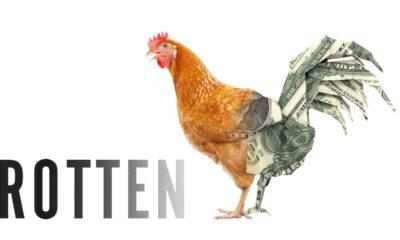 Release date of Rotten season 2 on Netflix