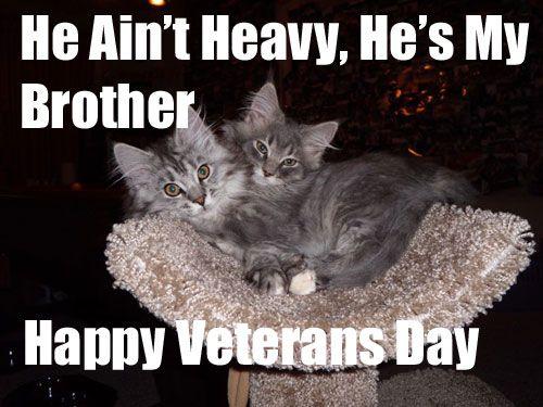 Happy Veteran Day 2019 Memes