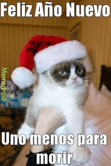 Feliz año nuevo memes 2020