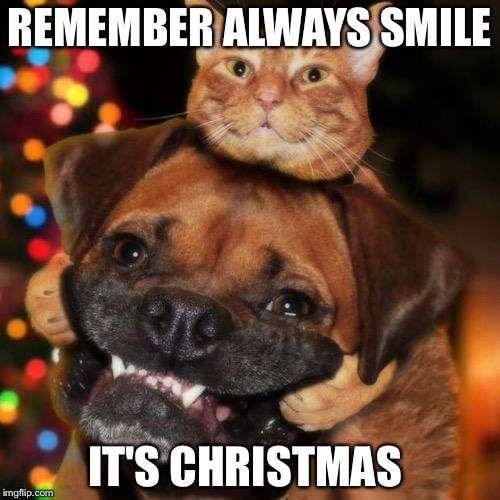 Merry Christmas 2019 Funny Memes