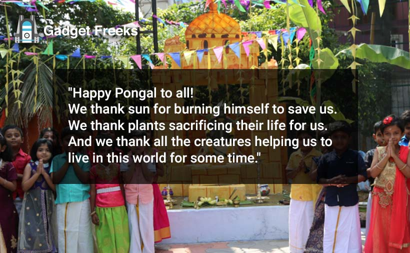 Happy Pongal 2020 Shayari