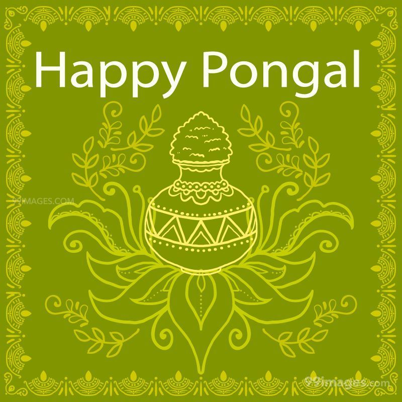 Happy Pongal DP