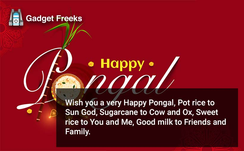 Happy Pongal Wishes for Friends & Family