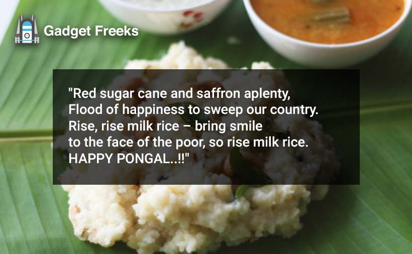 Pongal Poems