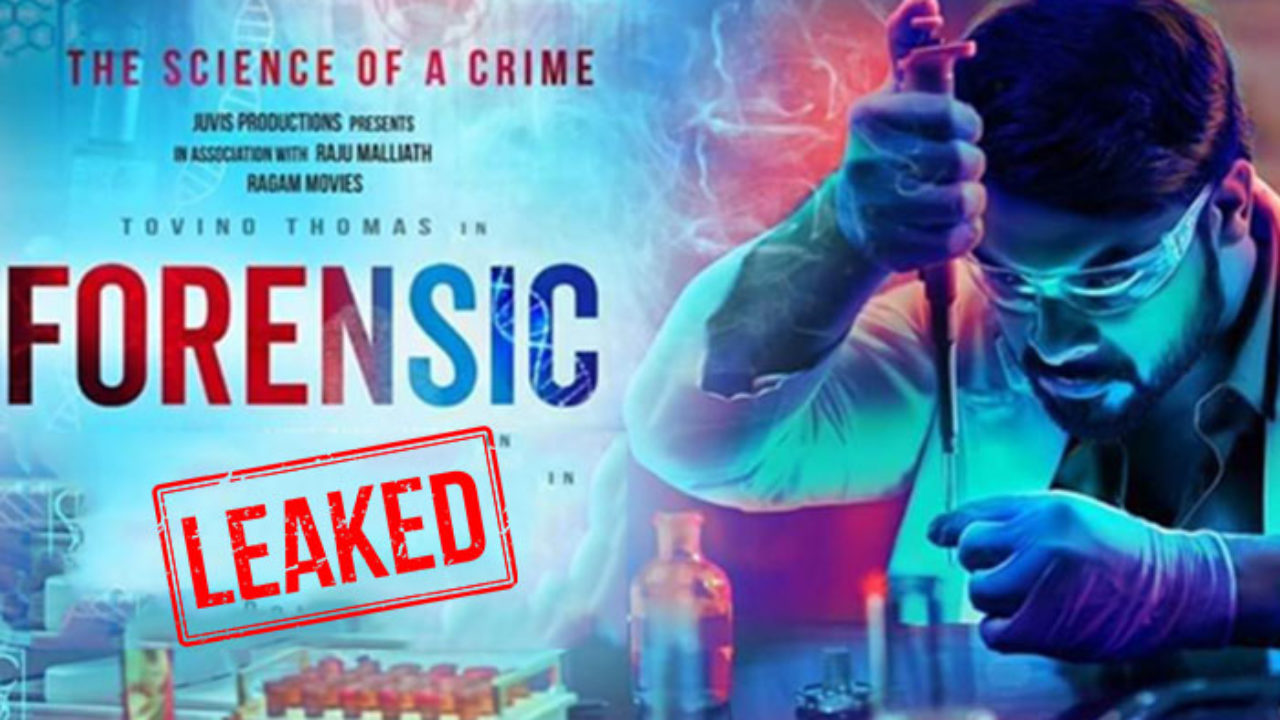 Malayalam Movie Forensic Leaked On The Sites Of Movierulz And The Tamilrockers Gadget Freeks